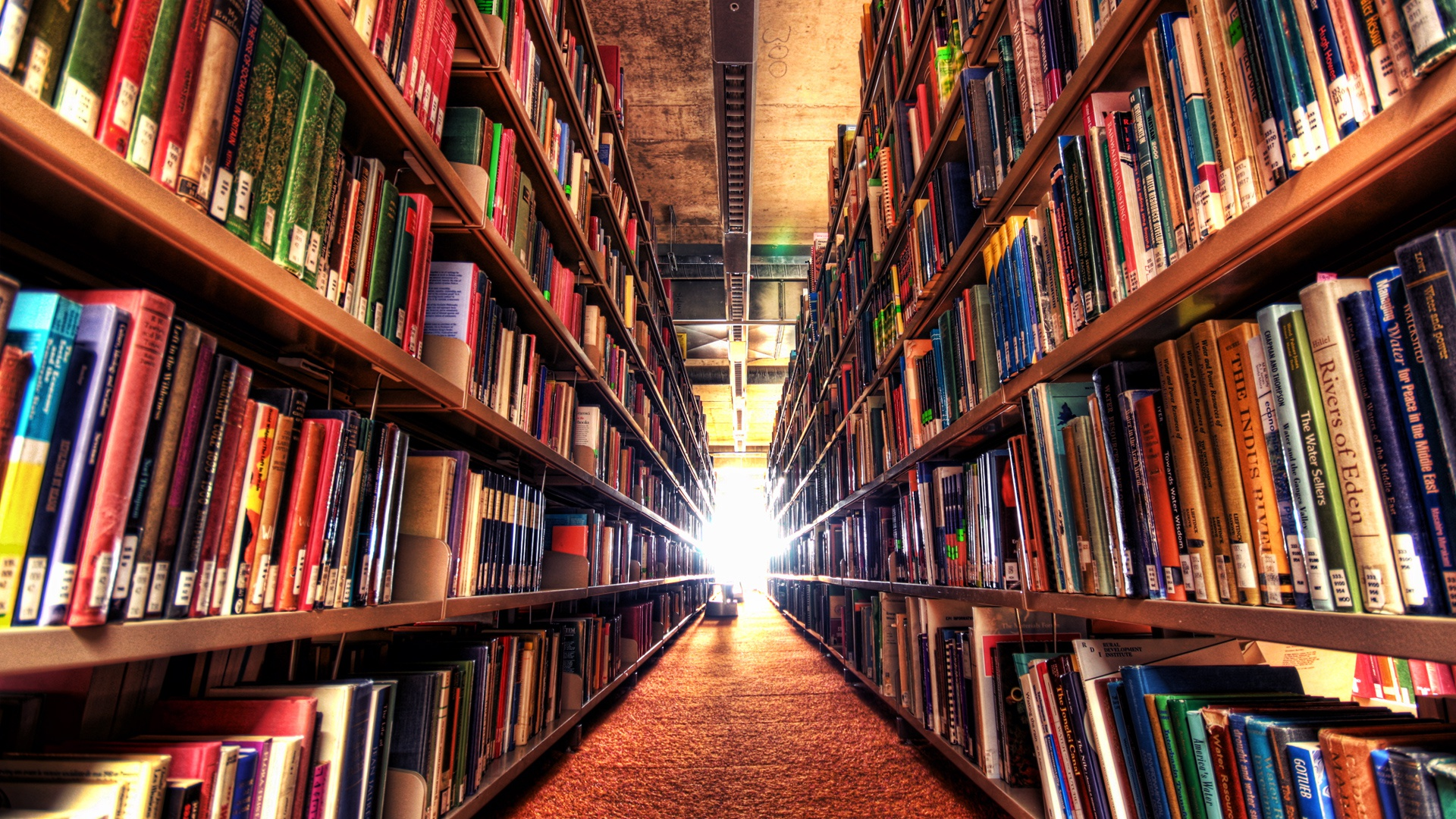 Mayorista de libros