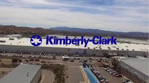Distribuidor de Kimberly Clark