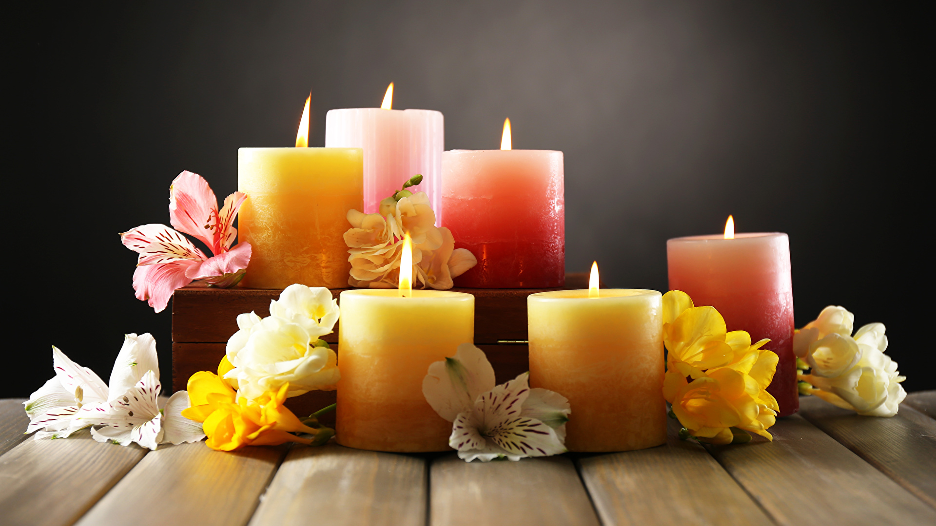 Distribuidor de velas