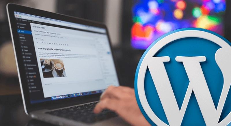 diseño-y-programacion-web-wordpress-la-orovata