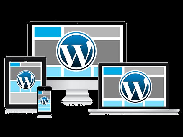diseño-y-programacion-web-wordpress-puerto-del-rosario