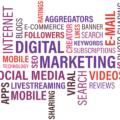 digital-marketing-expert-in-murcia